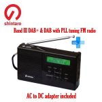 Automatic DAB stations preset scanning